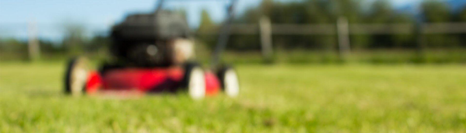 Einhell Rasenmäher: Top 3 Modelle, was zeichnet Einhell aus?