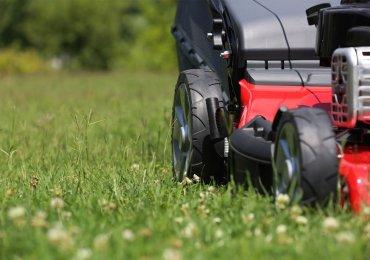 Die 3 besten Hecht Rasenmäher - Ratgeber