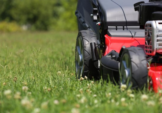Die 3 besten Hecht Rasenmäher – Ratgeber