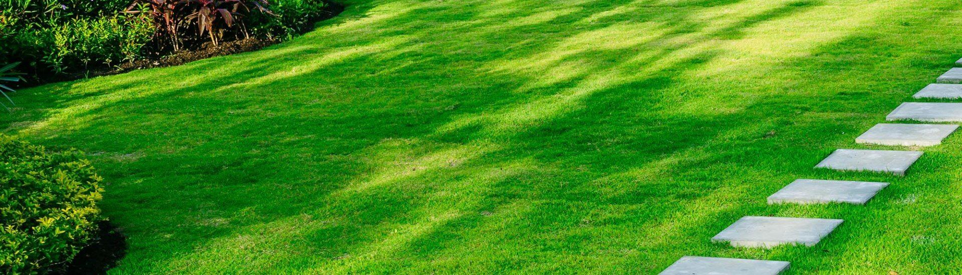 Scheppach Rasenmäher: Test, Ratgeber & Empfehlungen
