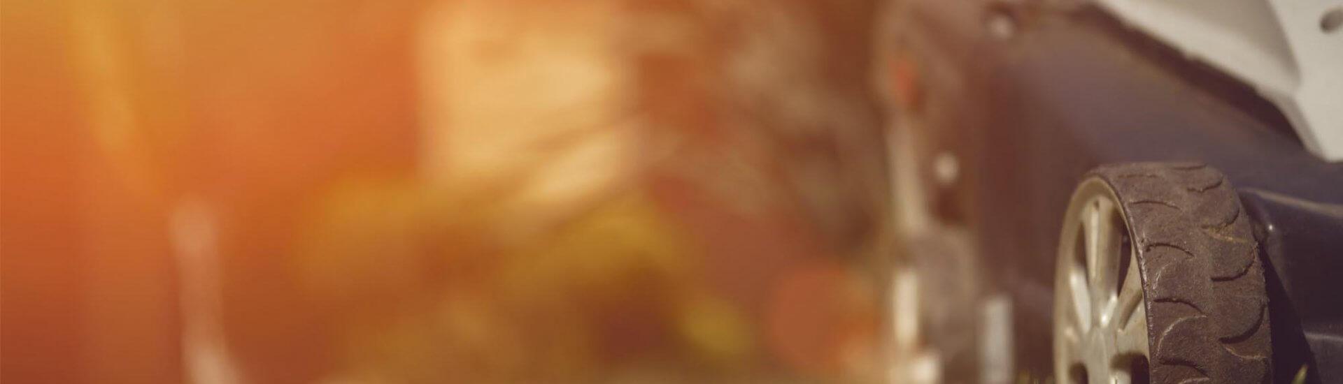 Wolf Rasenmäher: Vergleich, Empfehlung & vieles mehr