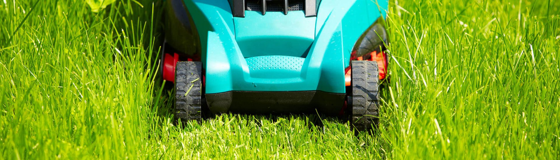 Akku Rasenmäher mit Mulchfunktion - Natürlicher Dünger für den Rasen