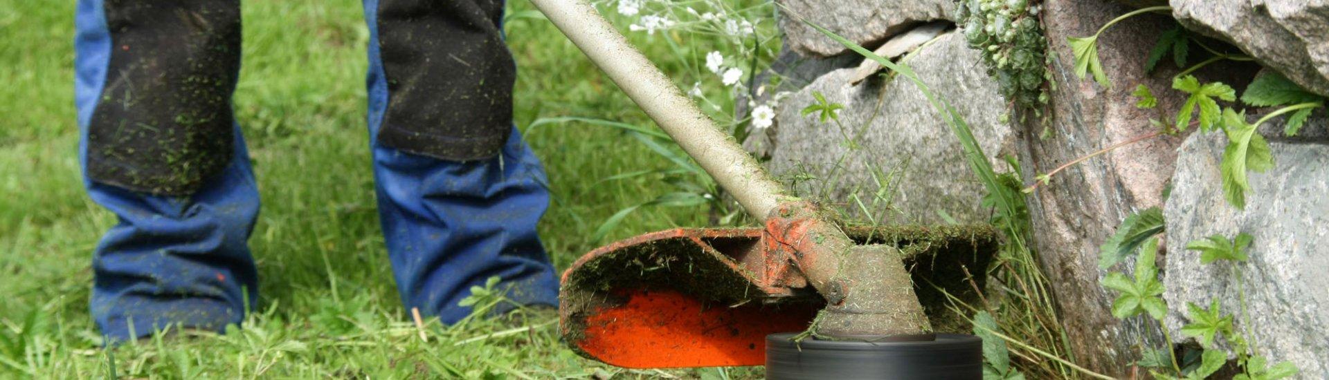 Rasenkanten schneiden: Anleitung, Geräte & Tipps