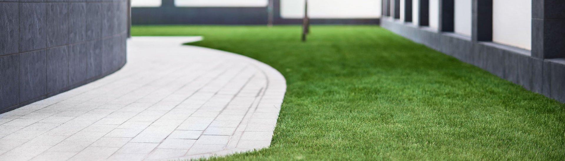 Stihl Motorsensen: Top 3 Modelle, Vorteile, Arten & Zubehör